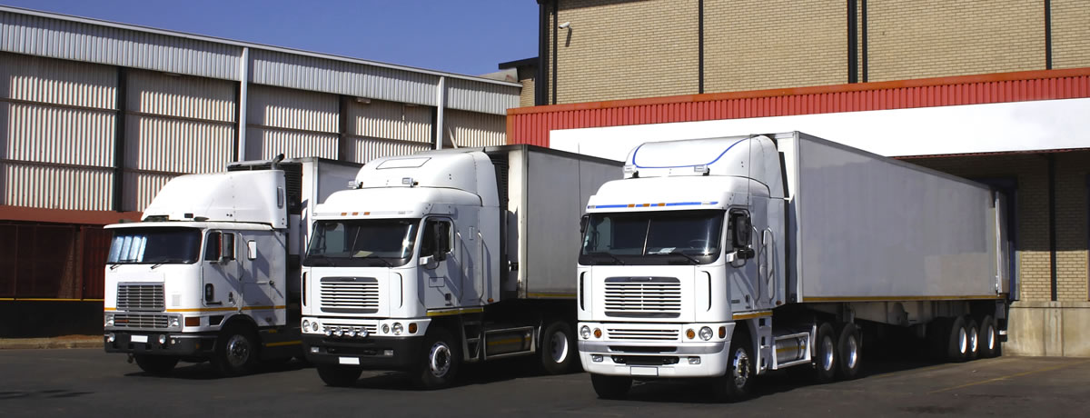 tailored and innovative logistics solutions